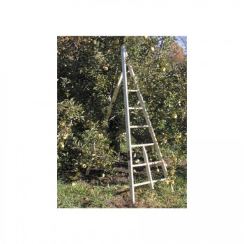 Wooden Tripod Apple Ladders