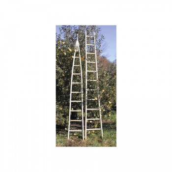 Wooden Apple Ladders