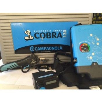 Campagnola E-COBRA 130 Demo Unit Available