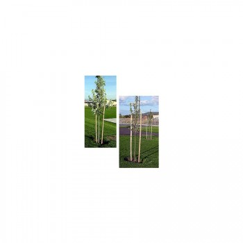 Pointed Tree Stakes - Round - 2″ dia